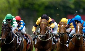 Fixed price betting melbourne cup live mohegan sports betting