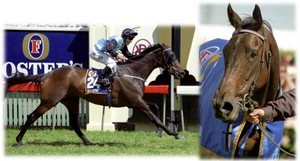 Brew - Melbourne Cup Winner 2000. Image: copyright Living Legends